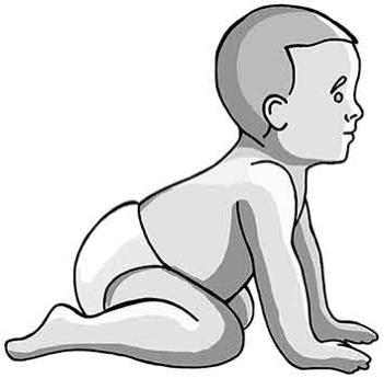 baby-vierfuesslerstand